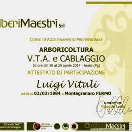 curadelverde.com-cura-del-verde-macerata-treeclimbing-potatura-alberi-alto-fusto-fruttiferi-alberi-da-frutto-olivi-viti-vigna-siepi-giardinaggio-Corso VTA 2