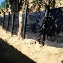 curadelverde.com-cura-del-verde-macerata-treeclimbing-potatura-alberi-alto-fusto-fruttiferi-alberi-da-frutto-olivi-viti-vigna-siepi-giardinaggio-cont12