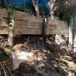 curadelverde.com-cura-del-verde-macerata-treeclimbing-potatura-alberi-alto-fusto-fruttiferi-alberi-da-frutto-olivi-viti-vigna-siepi-giardinaggio-cont3
