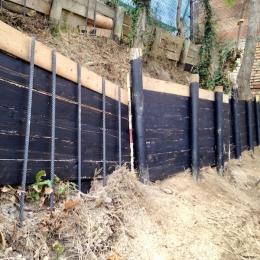 curadelverde.com-cura-del-verde-macerata-treeclimbing-potatura-alberi-alto-fusto-fruttiferi-alberi-da-frutto-olivi-viti-vigna-siepi-giardinaggio-cont8