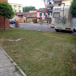 curadelverde.com-cura-del-verde-macerata-treeclimbing-potatura-alberi-alto-fusto-fruttiferi-alberi-da-frutto-olivi-viti-vigna-siepi-giardinaggio-Treeclimbing-CdV01.04'