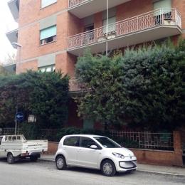 curadelverde.com-cura-del-verde-macerata-treeclimbing-potatura-alberi-alto-fusto-fruttiferi-alberi-da-frutto-olivi-viti-vigna-siepi-giardinaggio-cipressi 01