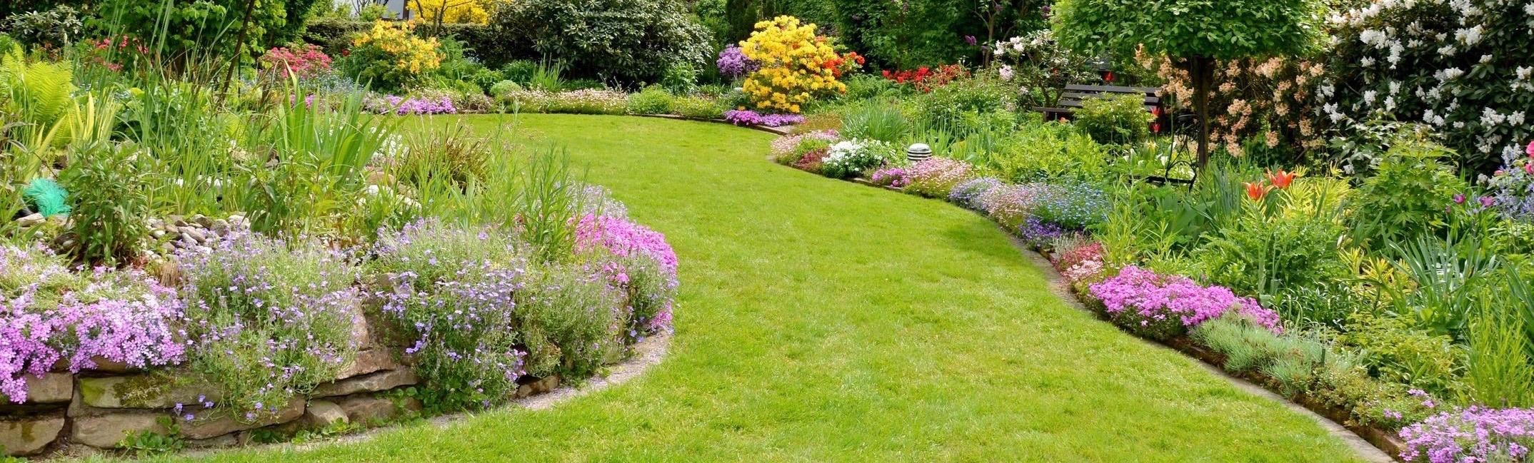 Alberi Ornamentali Da Giardino cura del verde – manutenzione giardini, potatura piante e